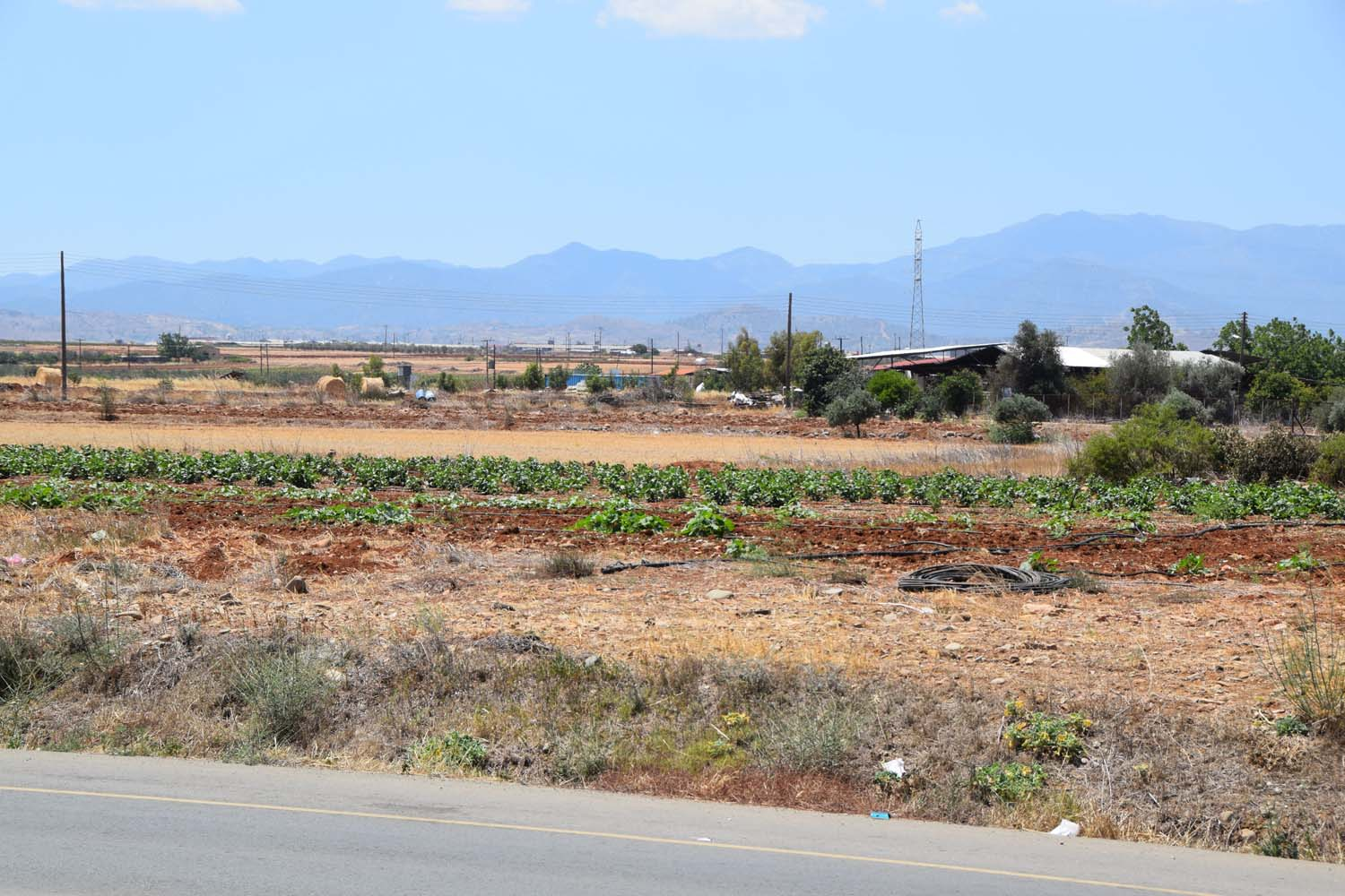 cultivations_1